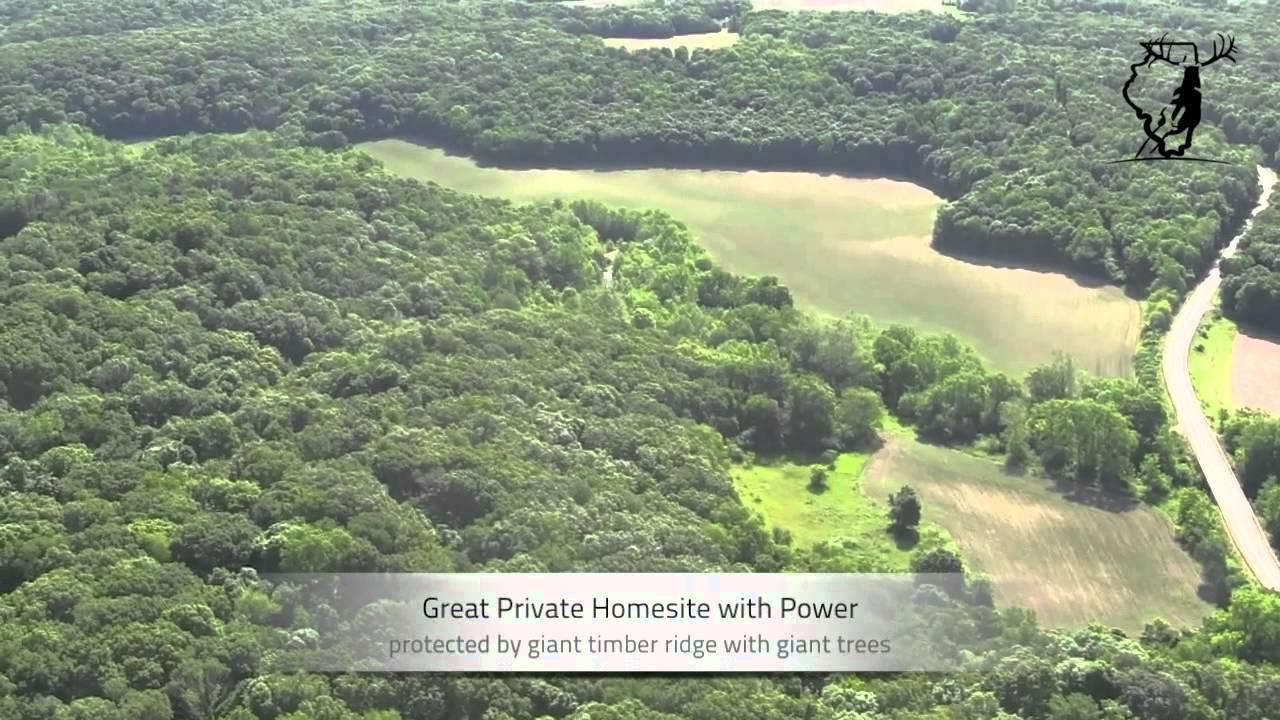 Illinois woodford county metamora - Illinois Land For Sale 130 Acres Woodford County An Illinois Land Company Listing