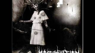 Heaven Shall Burn - Echoes (Intro)