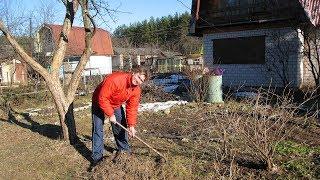 Что делать в саду в апреле  Первые работы в саду