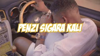 Twanga Pepeta - Penzi Sigara Kali (Official Video)