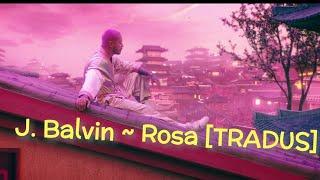 J Balvin - Rosa (TRADUS ÎN ROMÂNĂ)