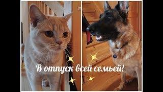 Путешествие с собакой  кошкой  детьми. Альтаусзее Австрия