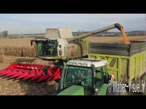 Chantier de récolte de maïs grain avec une moissonneuse Claas Lexion 760