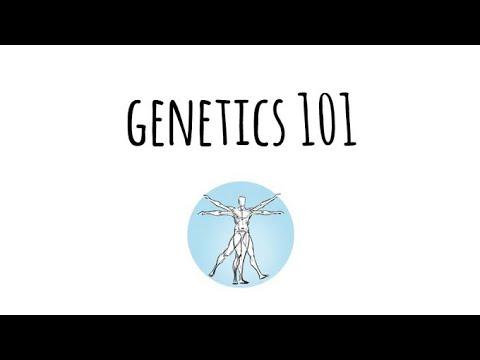 Genetics 101 | Ambry Genetics