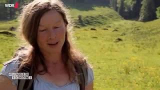 Southwestern Germany:The Allgaeu.A summer trip through beautiful landscape.With English subtitles