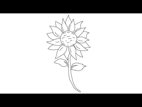 How To Draw A Sunflower Easy Step By Drawing Lessons For Kids