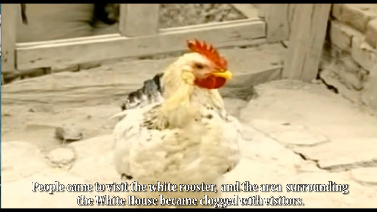 Download Char Horaz/The Speckled Rooster  Uyghur Movie English Subtitle by Kurban Niyaz