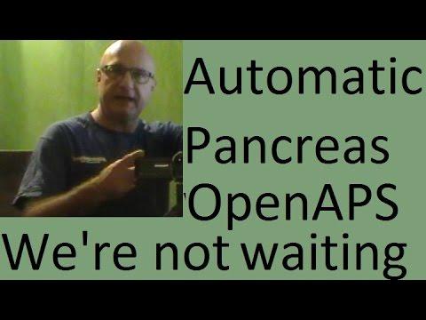 how to make pancreas work again