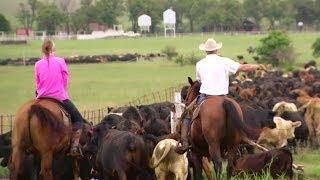 Tex-Mex for Cowboys