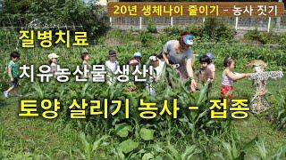질병치료 치유농산물 생산 토양 살리기 농사 접종- 3