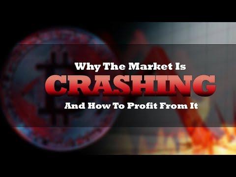 Crypto Crash   Will Bitcoin Rise Again? Crypto Market Sell Off