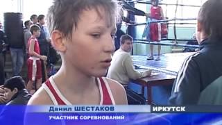 Городской чемпионат по боксу начался сегодня в Иркутске