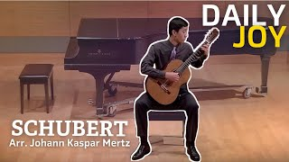 Schubert - Ständchen, from Schwanengesang D. 957 Arr. Johann Kaspar Mertz | From The Top | Daily Joy