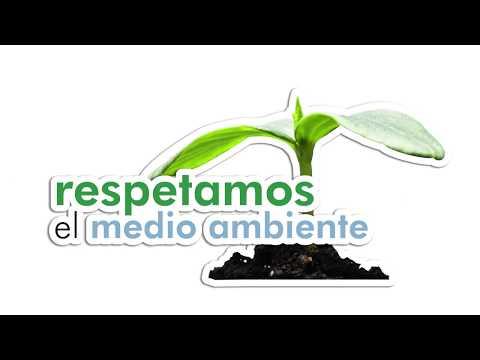 Día Mundial del Medio Ambiente - 5 de junio