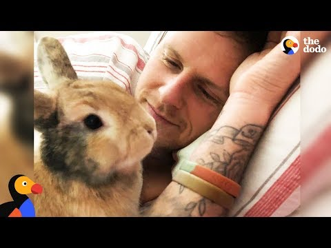 Amazing Rabbit Changes Man's Mind About Animals - CHIEF BRODY | The Dodo - Happy Father's Day!