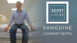 Restonic Scott Living Sanguine Euro Top Mattress Comfort Depth 1