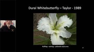 July 18, 2020 Green Thumb - Ron Killingsworth on Louisiana Irises