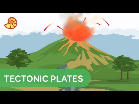 Tectonic Plates - The Skin of Our Planet | Down to Earth