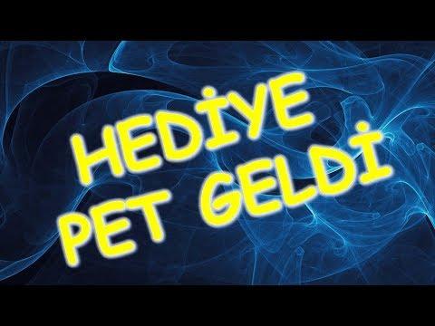 HEDİYE PET GELDİ | ZÜMRÜT KÜPE VE AY...
