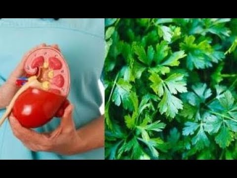 Parsley Will Cleanse Your Kidneys Fast and Naturally