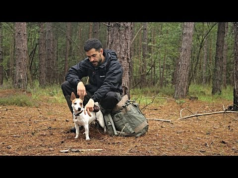 Hiking in the Rain with my Dog - Warm Fire, Knife Work and Coffee at The Bushcraft Camp