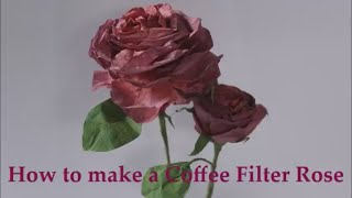 How to make Coffee Filter Roses with Hey Angela Marie