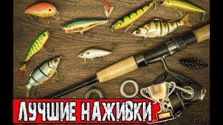 Лучшая наживка на рыбалку на щуку ,окуня и судака