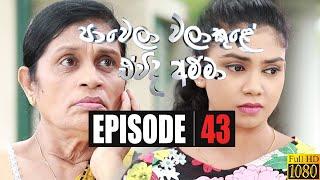 Paawela Walakule | Episode 43 11th January 2020 Thumbnail