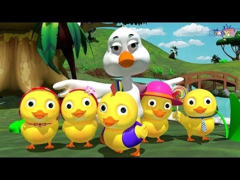 Five Little Ducks Song   Nursery Rhymes for Kids   Kachy TV Nursery Rhymes - Kids Songs