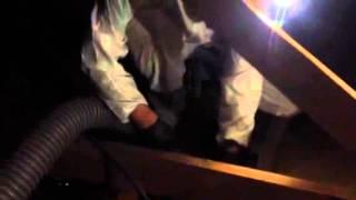 Ecoattics Team removing Insulation