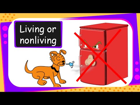 Science Living And Non Living Things English Youtube