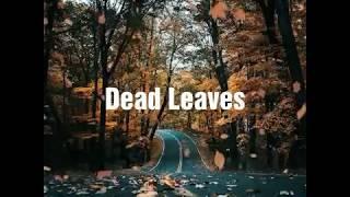 BTS - Dead Leave (고엽) [Indo Lirik]
