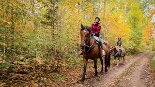 SOUTH ALGONQUIN TRAIL RIDE | CANADIANKELSEY