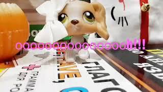 LPS:клип ~Boy like you♡~