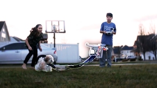 FLYING MY DOG WITH MY DRONE! Gone Wrong *NOT CLICKBAIT*
