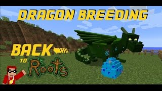 Baixar Minecraft FTB HermitPack - Back to Roots ep 7 - Breeding Dragons and Dragon Eggs