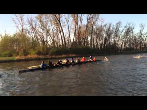 Rowers Attacked By Flying Asian Carp 2015