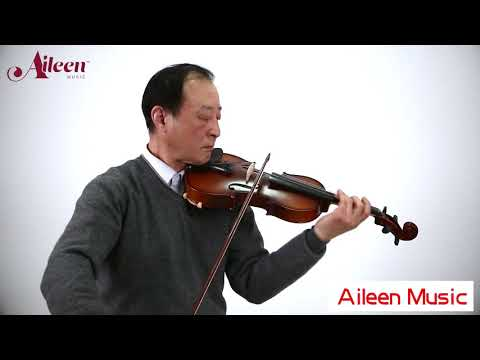 Aileen Music Entrylevel acoustic violin for students VG103
