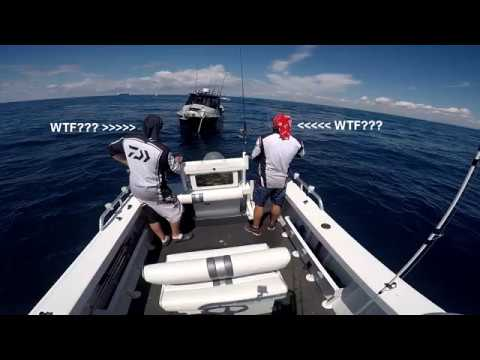 Sydney Kingfish @ Offshore With Rob 2017