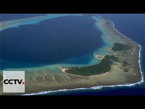 Overseas Chinese support China's stance on South China Sea issue