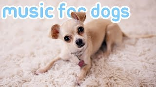 Music Your Dogs Trust! 15 HOURS of Sleep Songs for Anxious Dogs!
