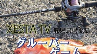 XESTA TV 鹿児島県甑島 グルーパーゲーム
