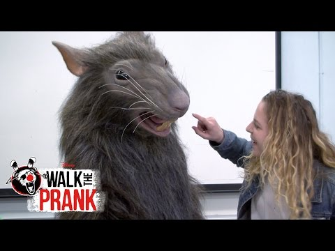 Rat | Walk The Prank | Disney XD