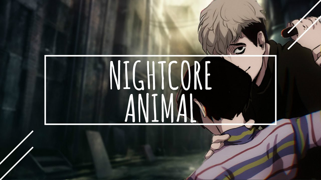 Neon Trees Animal Mp3 Download - MusicPleer