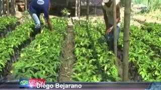 (VIDEO) Gobierno Provincial de Zamora Chinchipe apoya a Agricultores