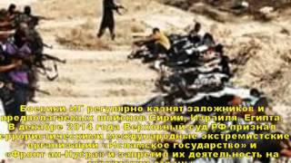 Боевики ИГИЛ казнили 300 пленников