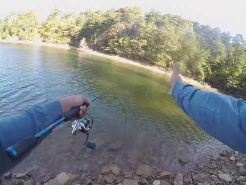 Lower Lake Level Bank Fishing Tip! (Local.Lanier.Hooker)