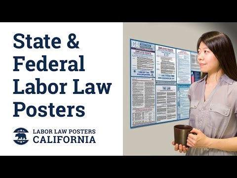 California State and Federal Labor Law Poster Video