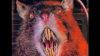 """Фото к видео """"Мыши съели малыша"""""""