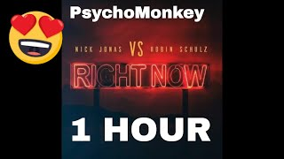 [1 Hour] Nick Jonas, Robin Schulz - Right Now